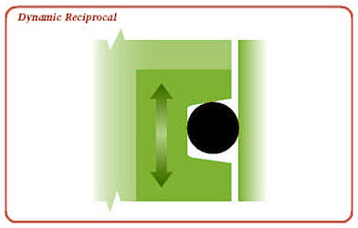 Reciprocal Dynamic Seal