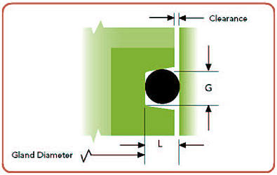 dynamic glands diagram