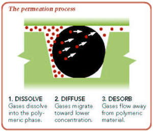The permeation process